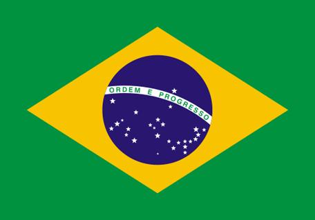 världens flaggor spel